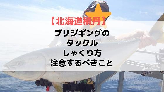 【北海道積丹】ブリジギングのタックル、しゃくり方、注意するべきこと