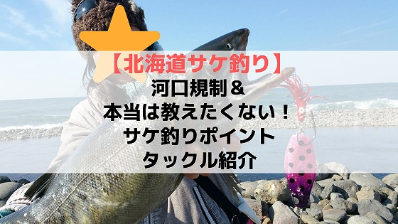 北海道サケ釣り河口規制サケ釣りポイント