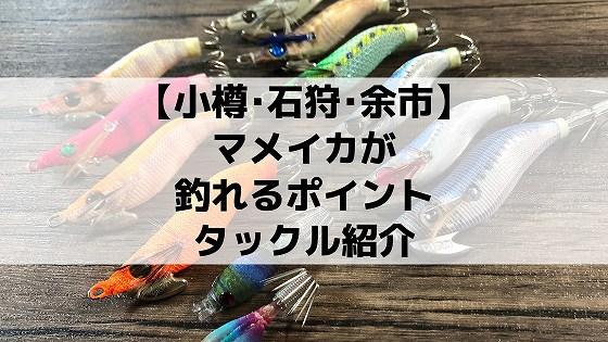 小樽石狩余市、マメイカ釣りポイントタックル釣り方紹介