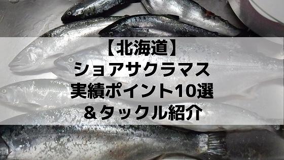 北海道ショアサクラマス実績ポイント&タックル紹介