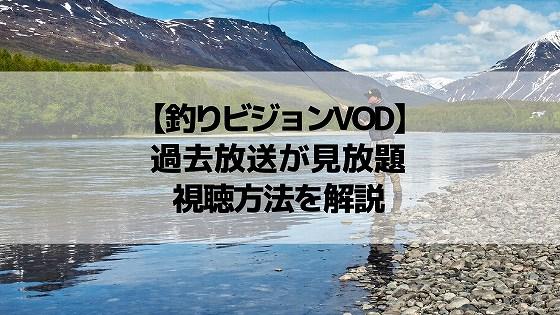 「釣りビジョンVOD」で過去放送が見放題!視聴方法や料金など徹底解説
